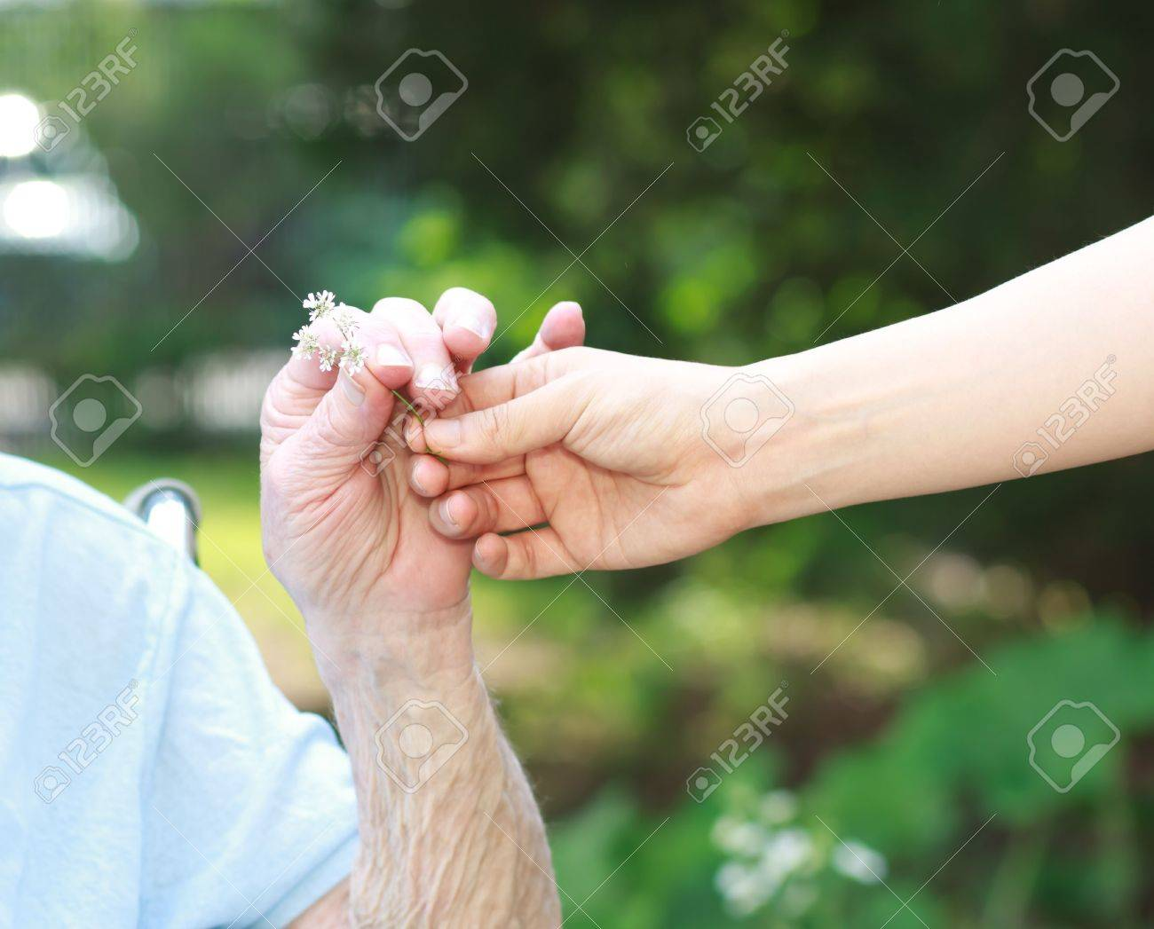 giving a white flower to senior lady outside stock photo picture