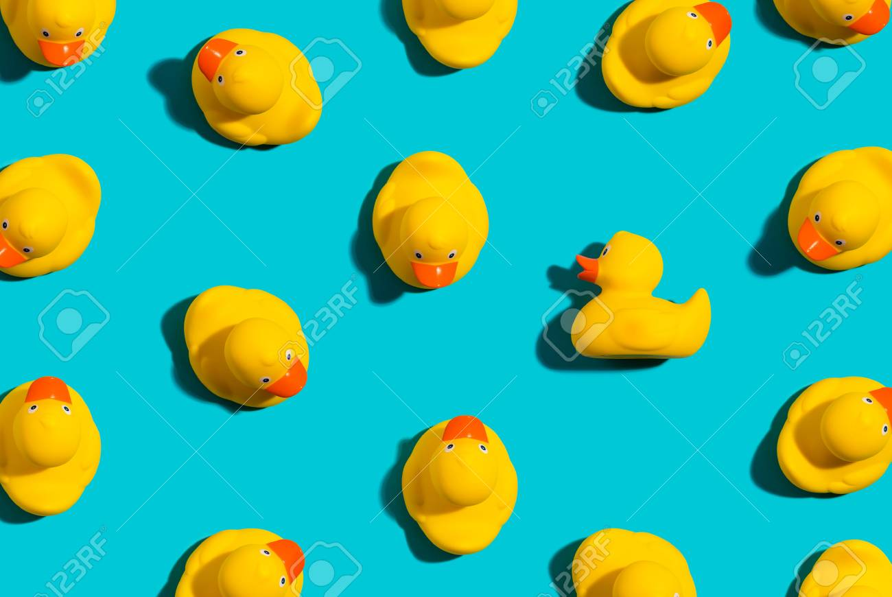 One out unique rubber duck concept on a blue background - 108750299