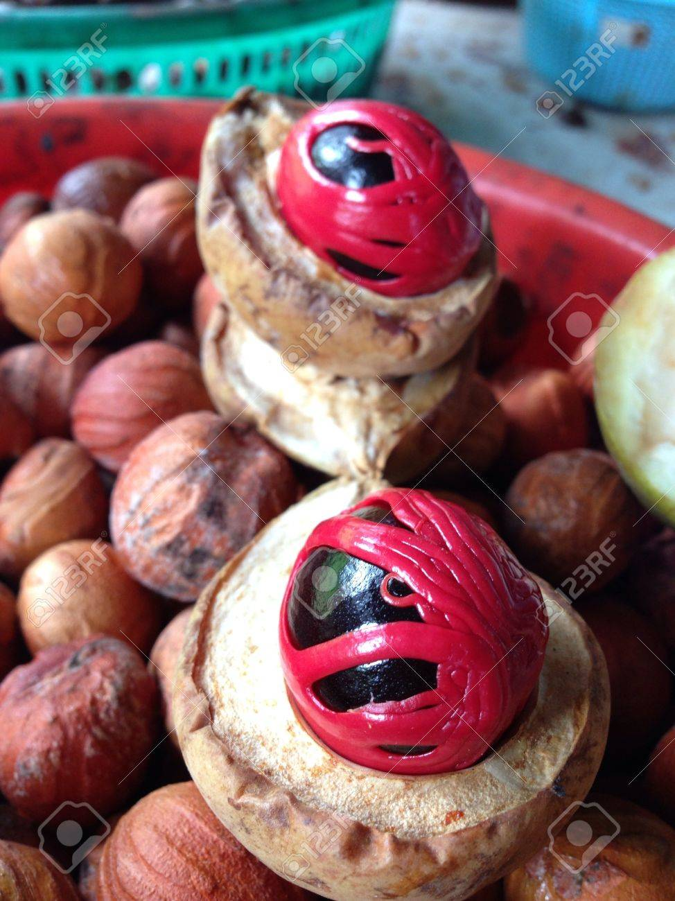 Upclose of a halved nutmeg fruit known for its many values and