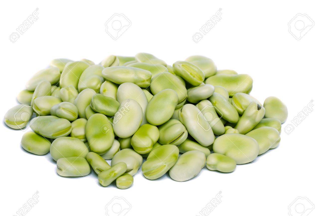 Close up view of some broad beans isolated on a white background. Stock Photo - 9941414
