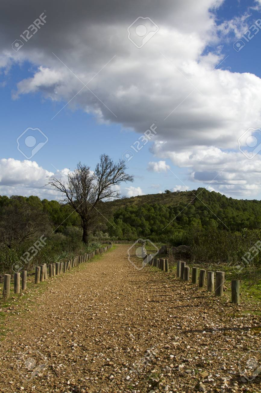 Landscape view of a dirt road on the countryside of Alentejo. Stock Photo - 17428763