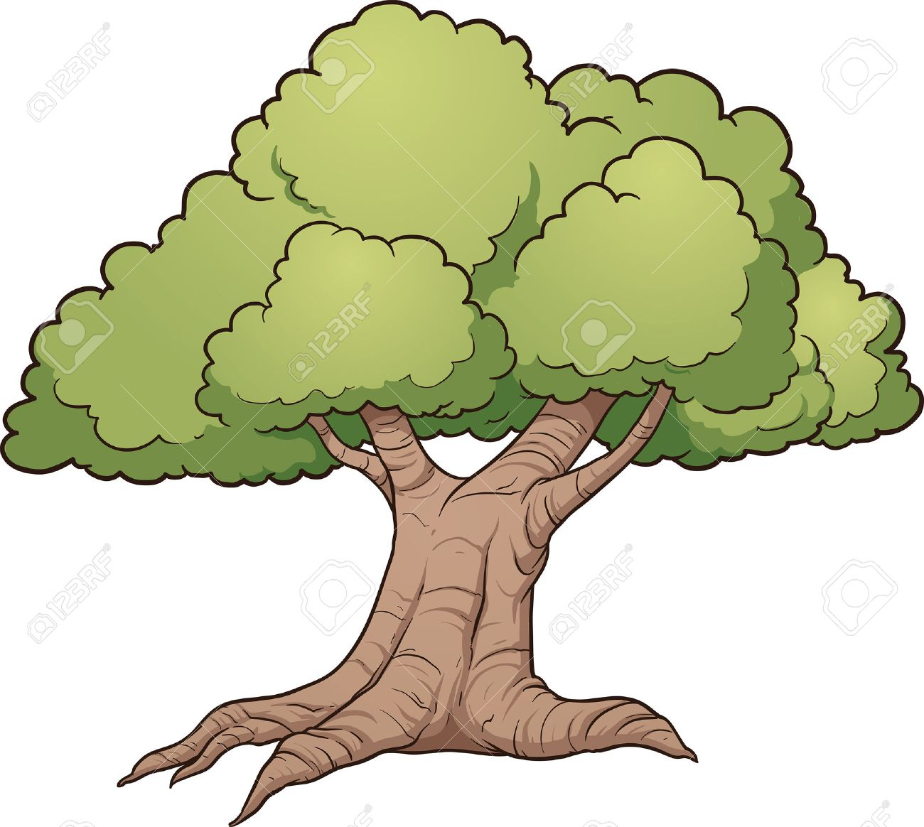 Image result for cartoon oak tree