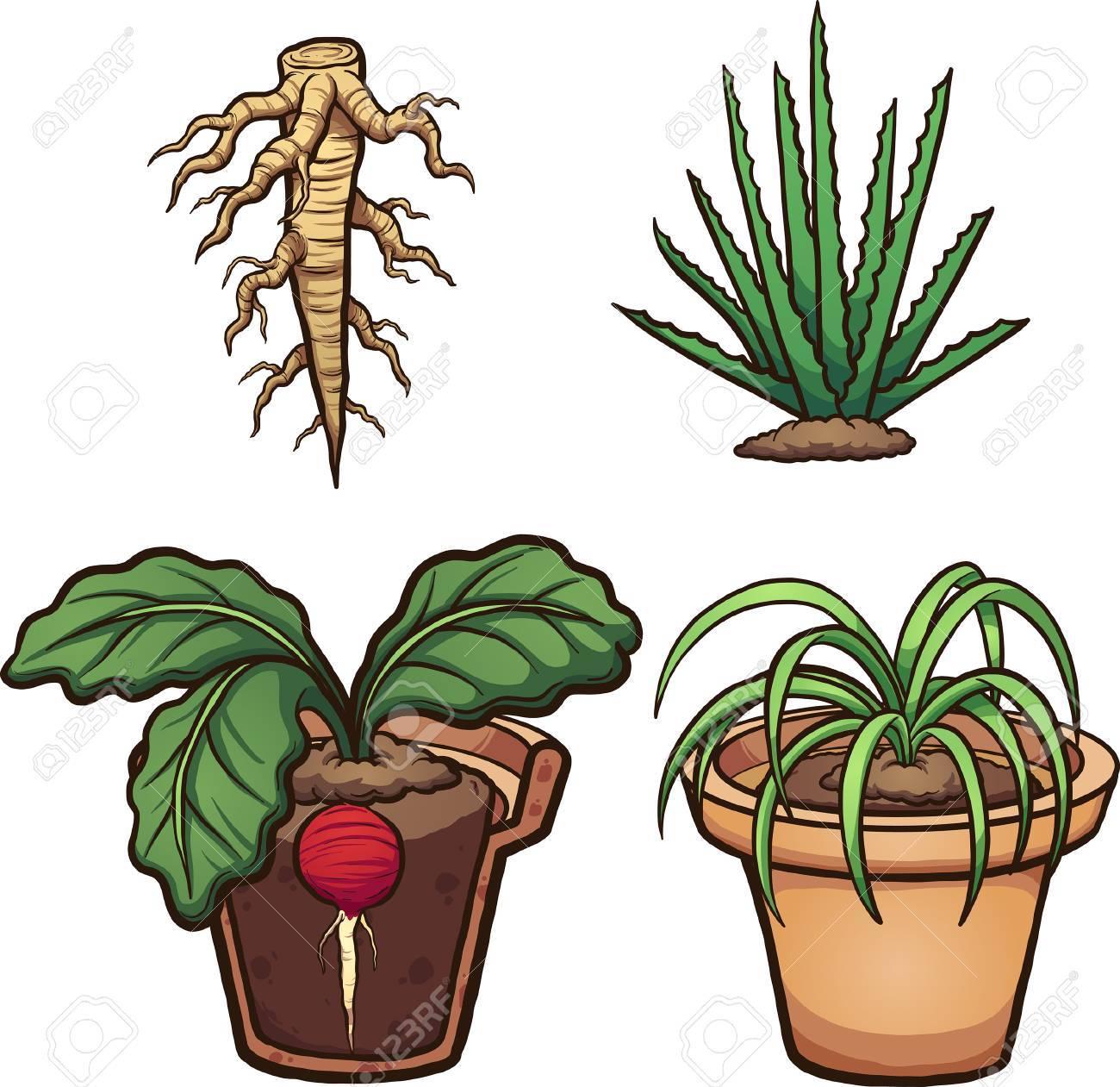 Plantes De Dessin Animé Racines Et Pot De Fleur Illustration De Clipart Vectoriel Avec Des Dégradés Simples Certains éléments Sur Des Calques
