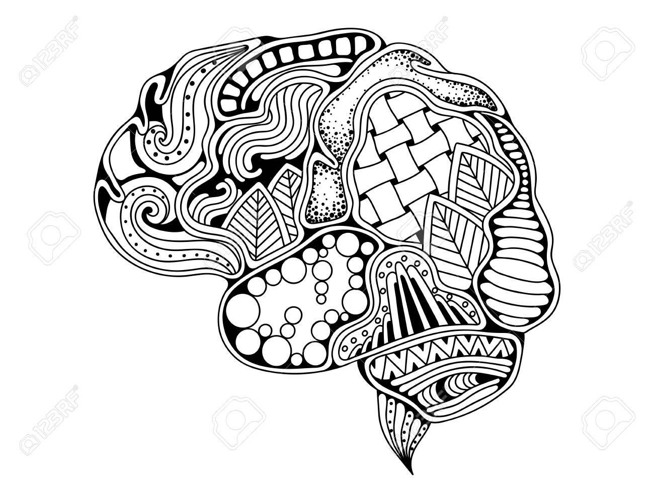 Human brain doodle decorative curves, creative mind, learning..
