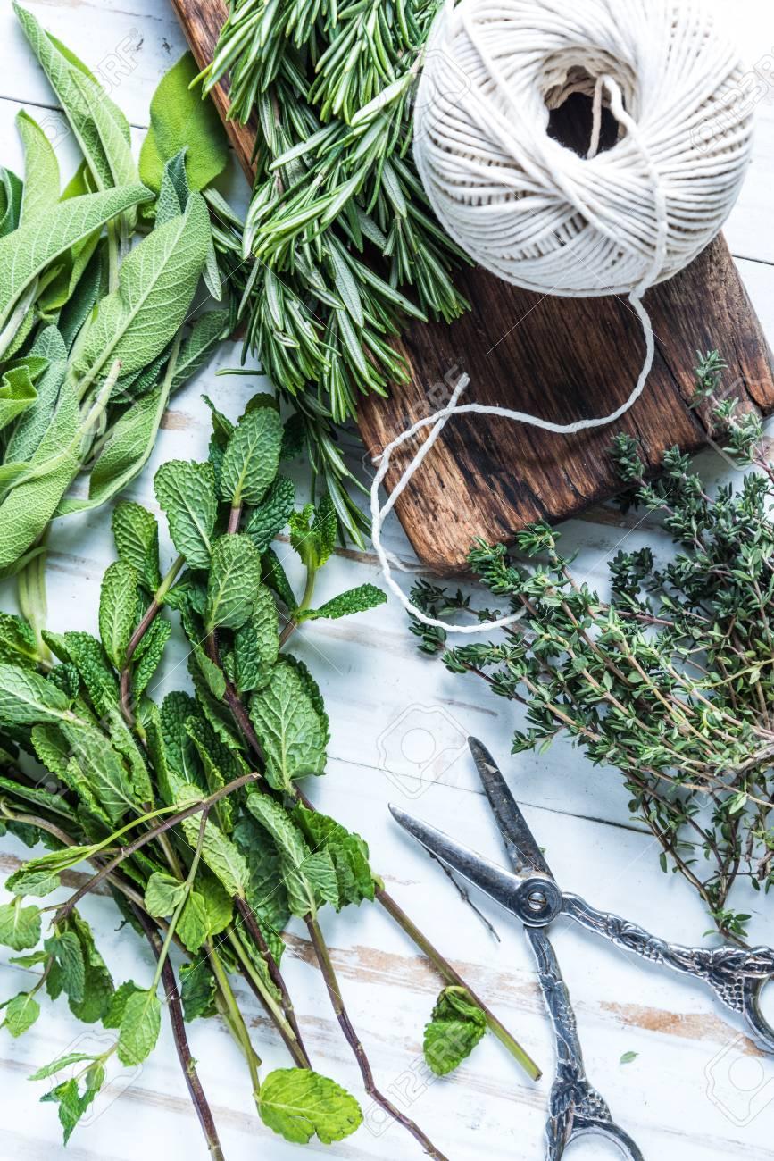 Garten Frische Kräuter Vorbereitung Für Traditionelle Erhaltung Und