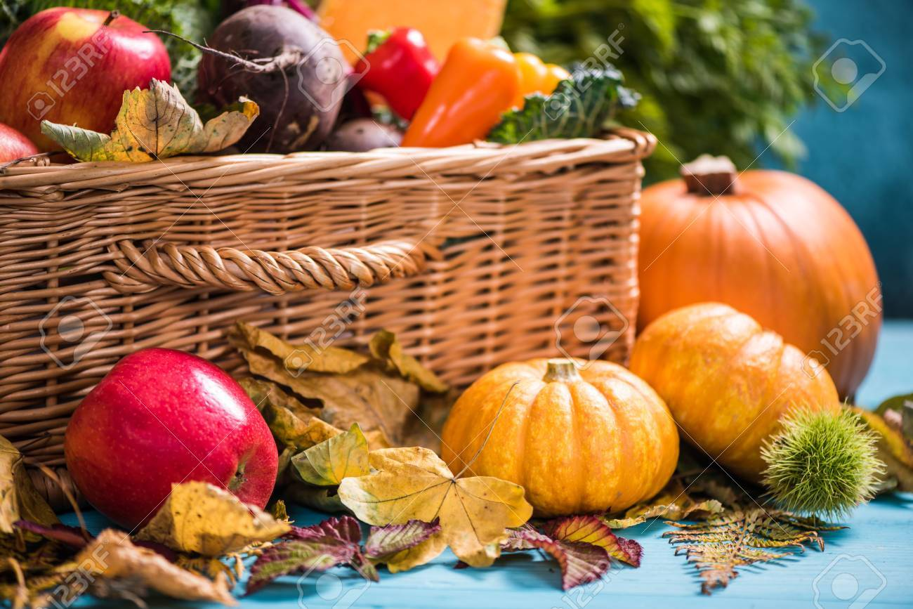 Harvest Time, Early Fall And Thanksgiving Stock Photo, Picture And Royalty Free Image. Image 64109031.