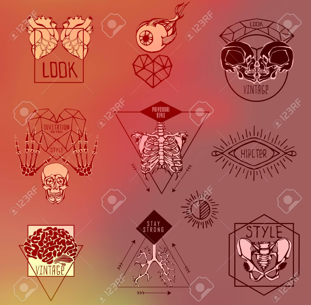 Conjunto De Etiquetas Con La Mano Sacar Esqueleto Humano Y La ...