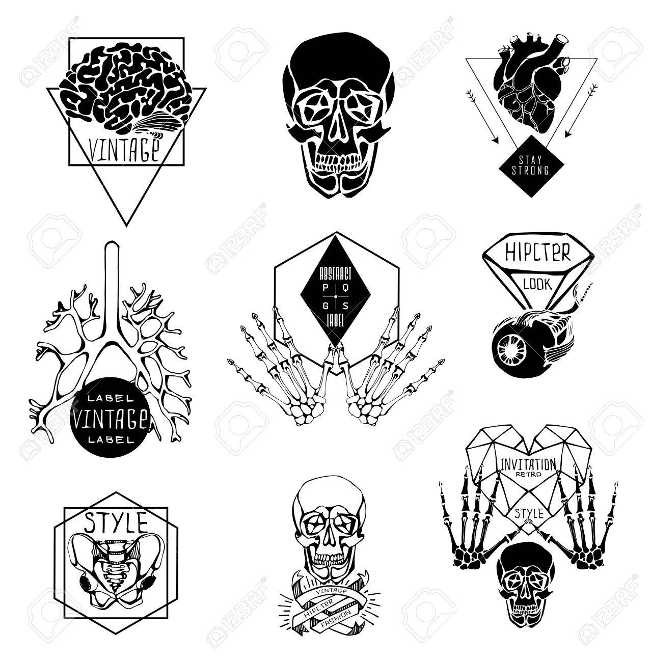 Set Of Labels With Hand Draw Human Skeleton And Anatomy Royalty Free