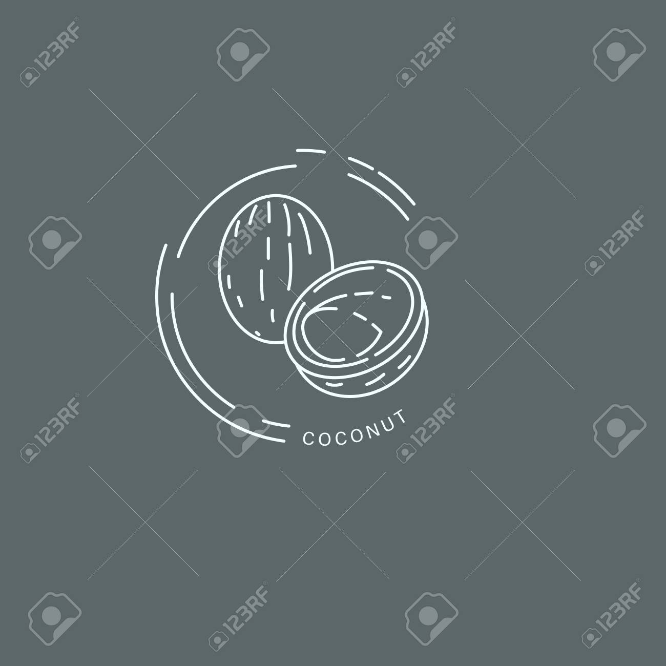 Vector icon and logo for spices and herbs. Editable outline stroke size. Line flat contour, thin and linear design. Simple icons. Concept illustration. Sign, symbol, element. - 113854033