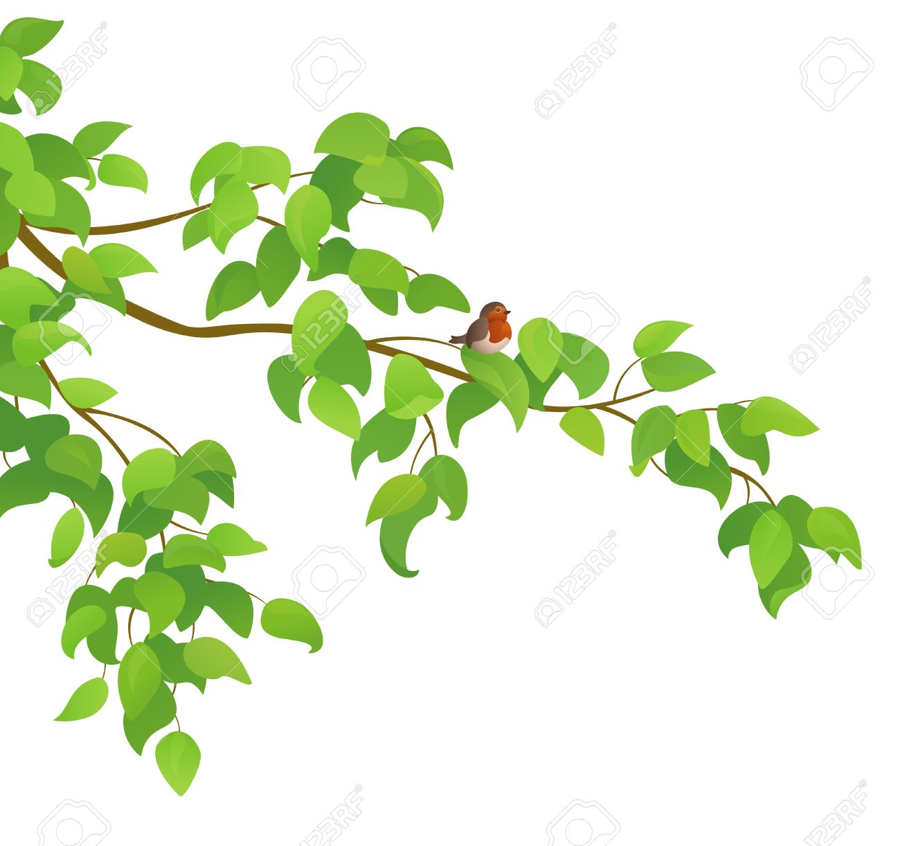 Vector illustration of a green tree branch with a bird Stock Vector - 20007674