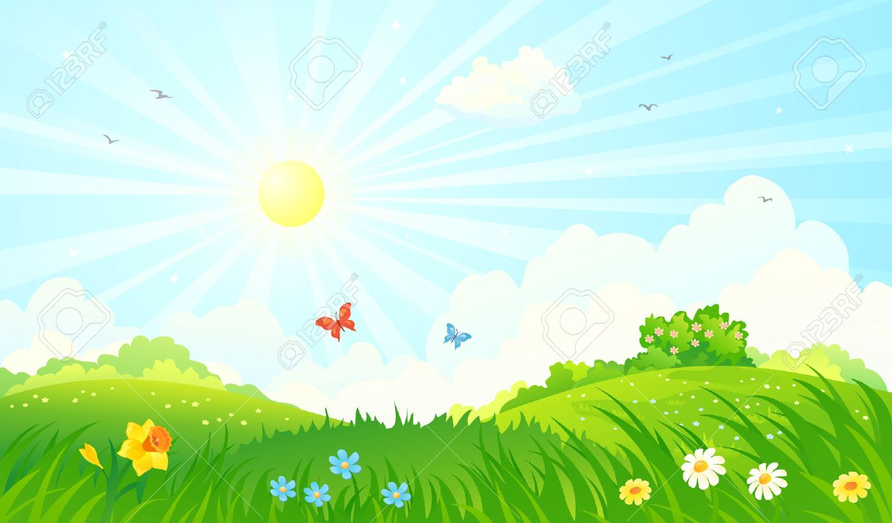 Vector illustration of a spring sunny meadow - 53981960