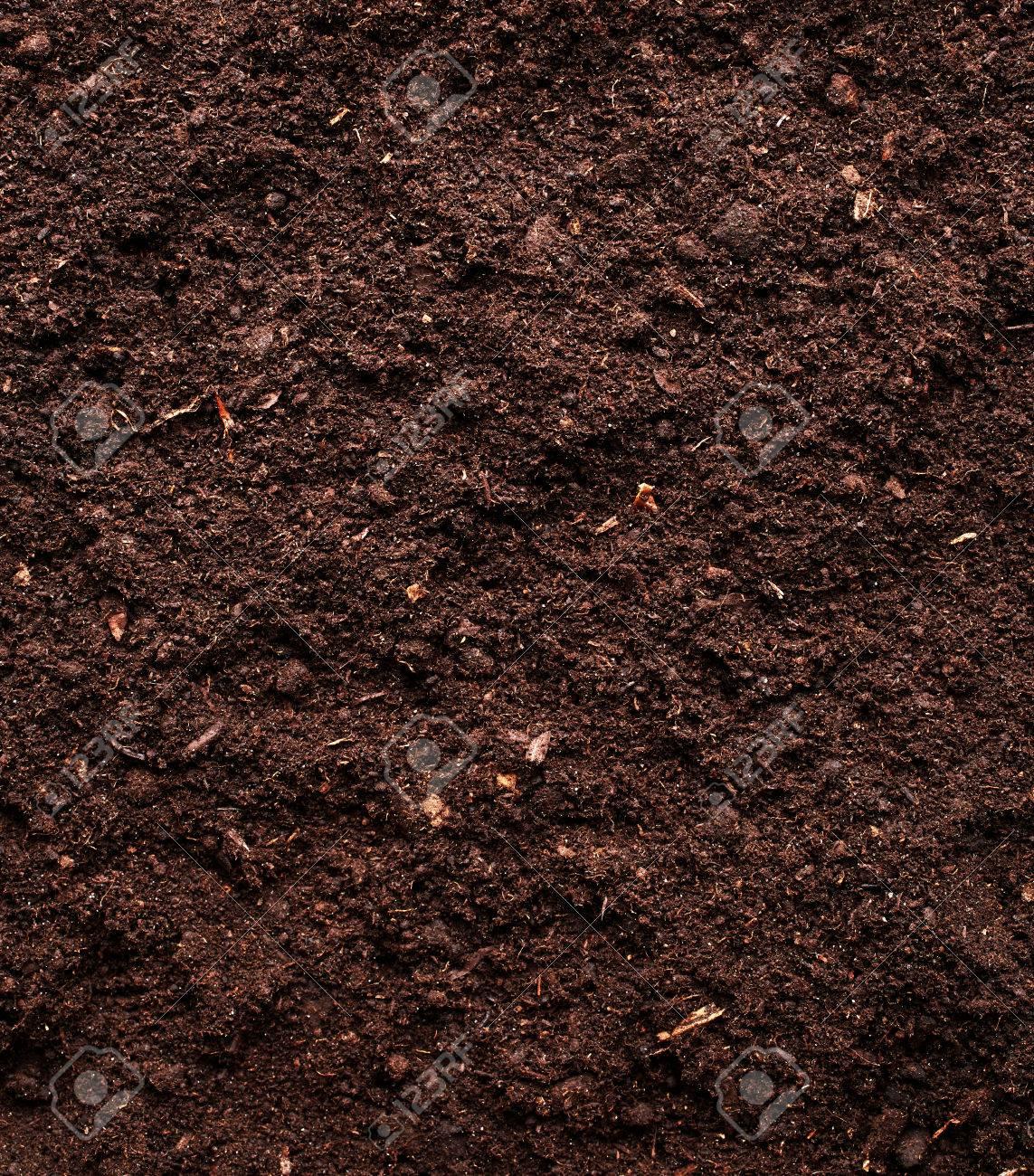 Soil background - 45819489