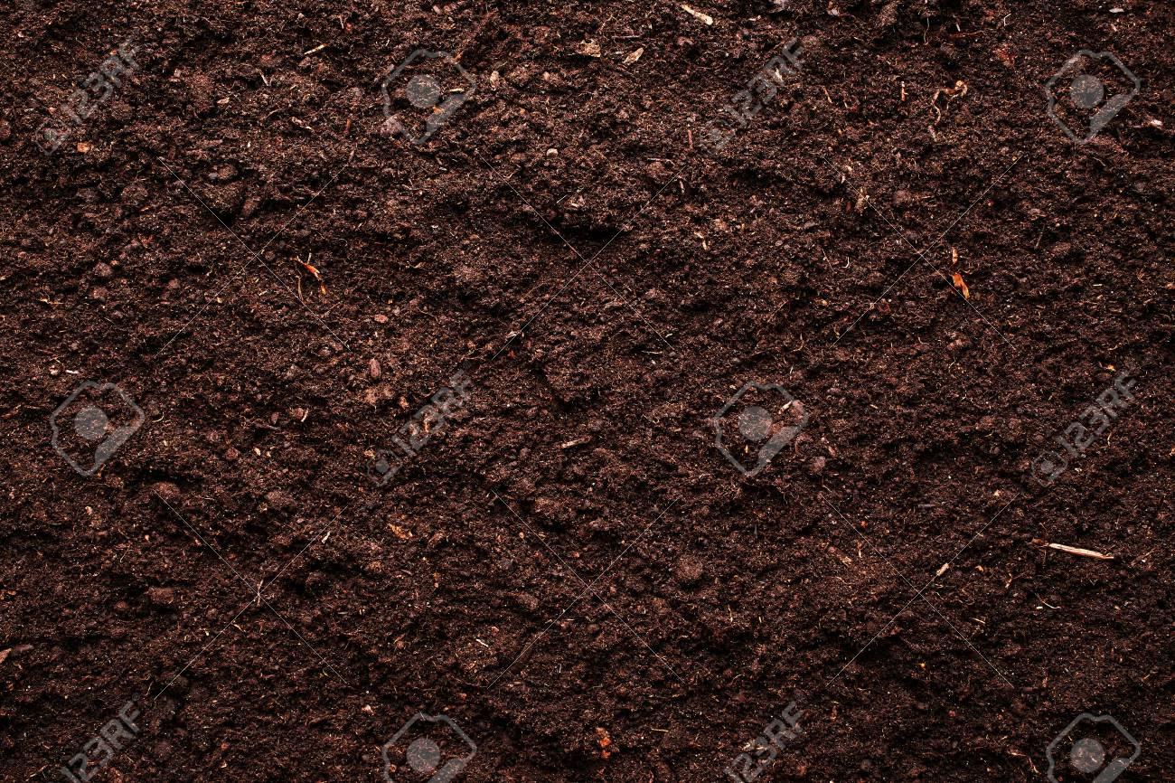 Soil background - 45819490