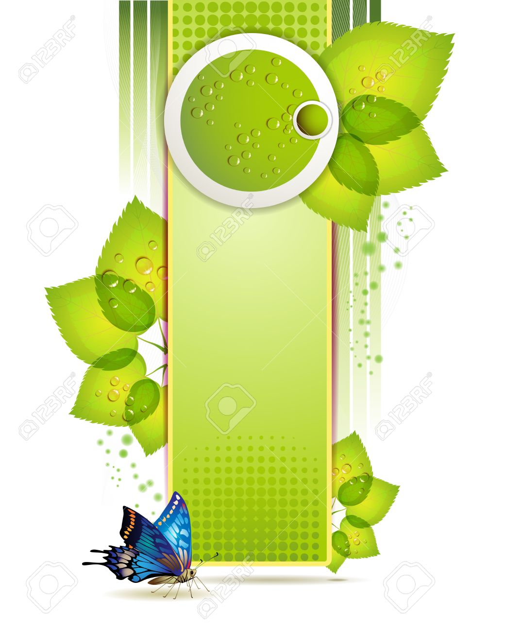 Banner design with leaf and drops Stock Vector - 10867542