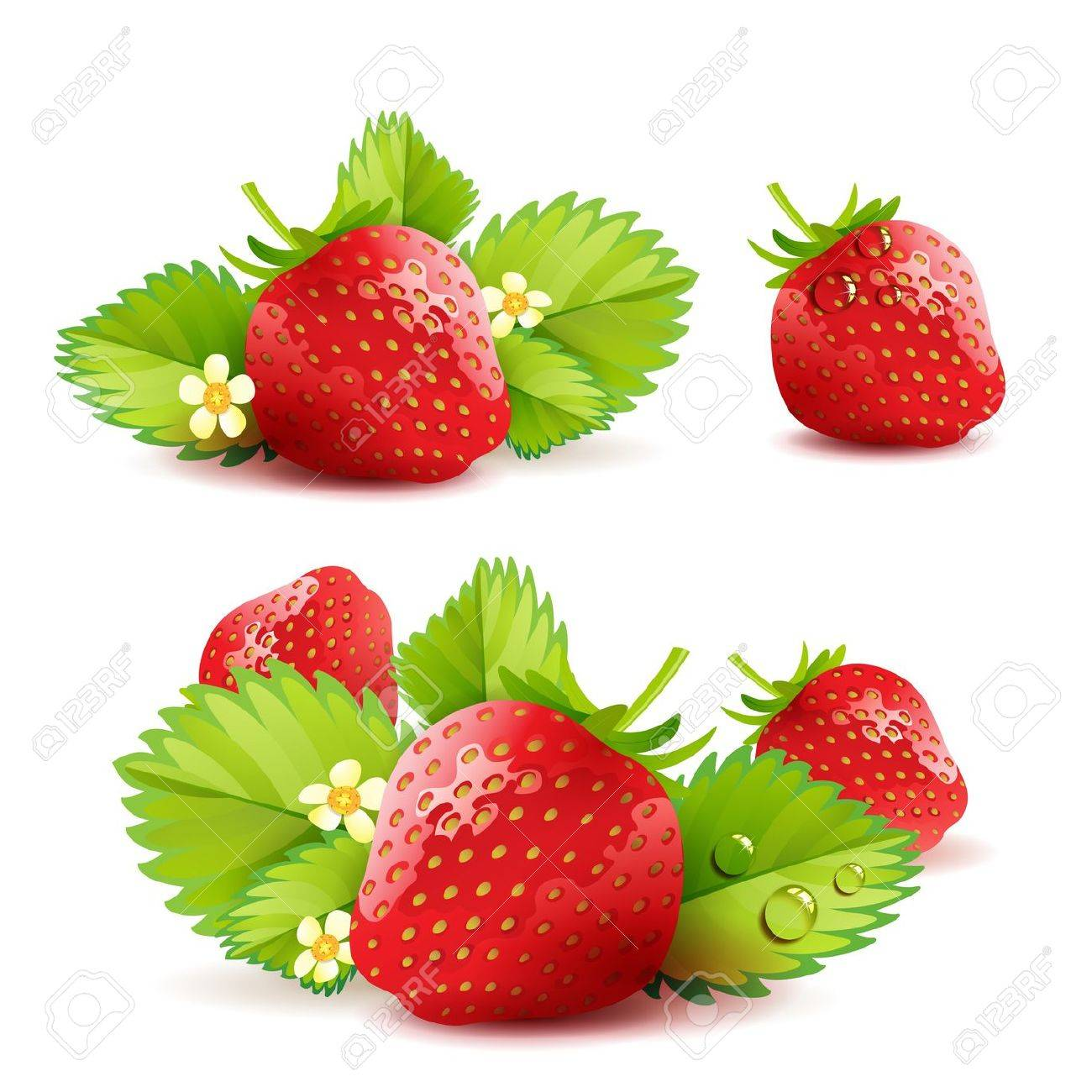 Strawberry with leafs - 13727873