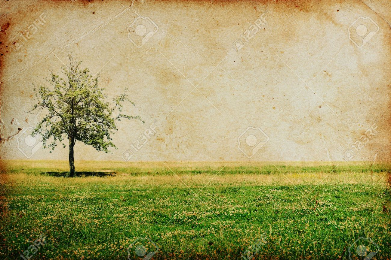 Trees vintage wallpaper