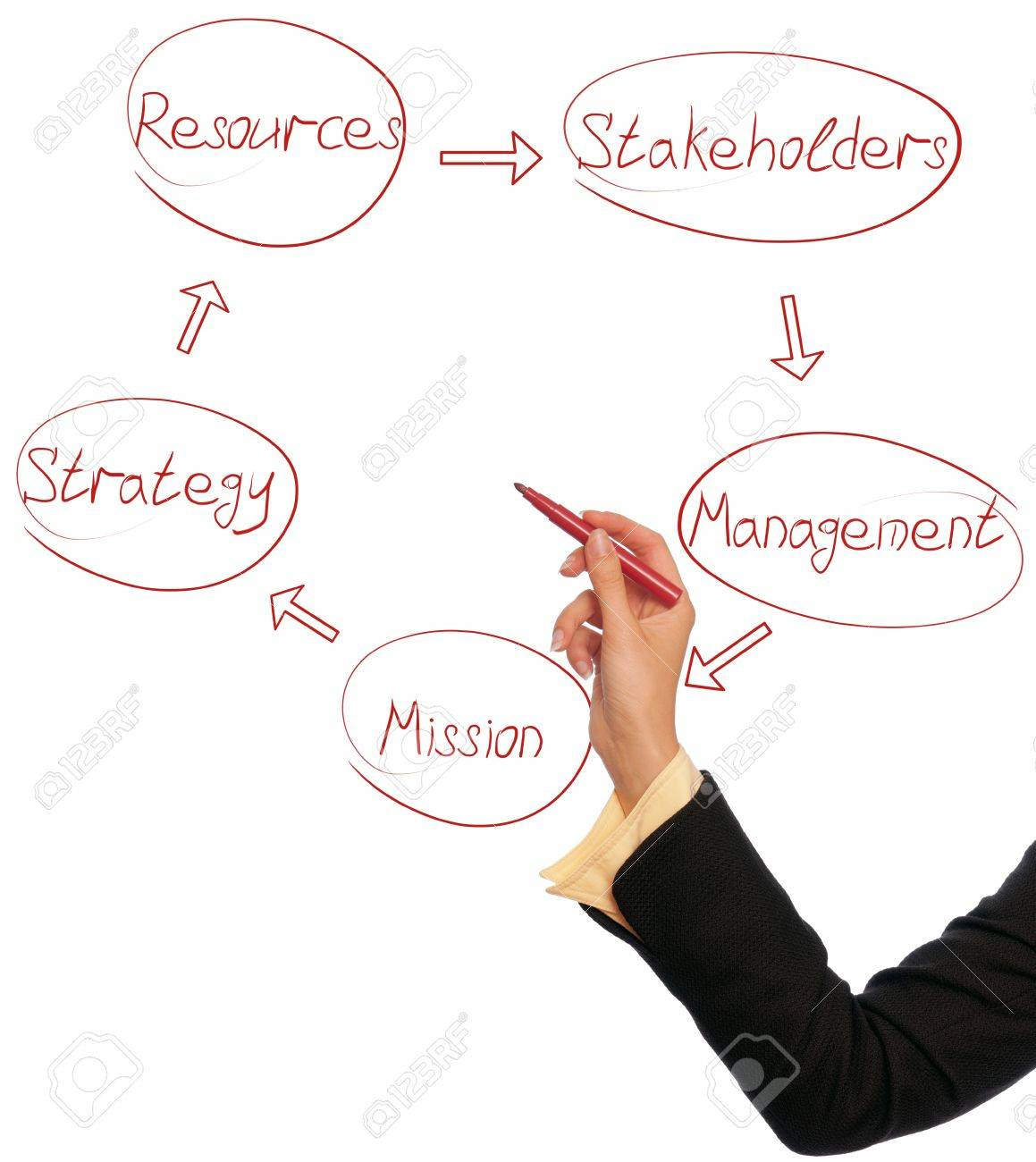 Woman drawing a business diagram of management cycle Stock Photo - 9436786