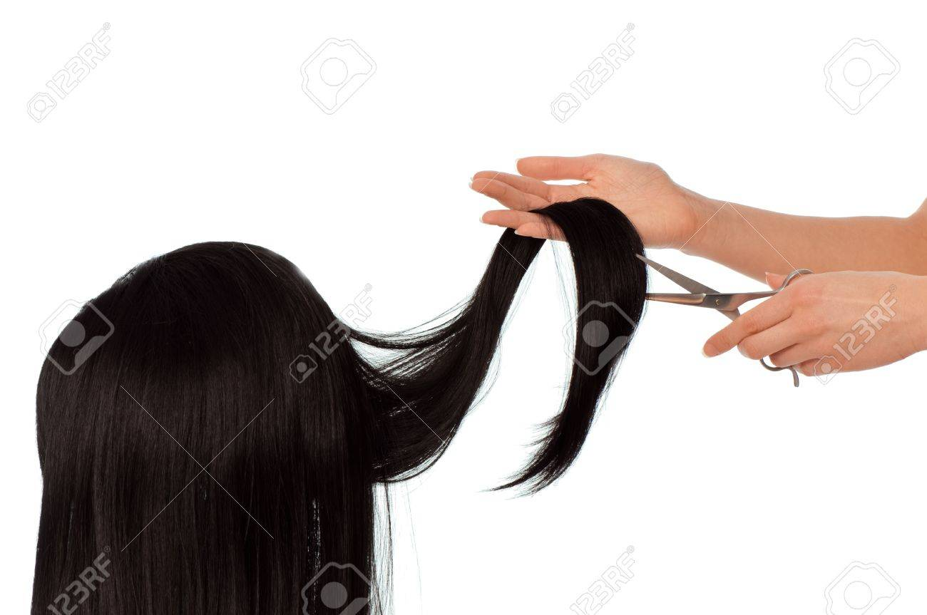 hairdresser cutting young woman with long black hair Stock Photo - 14441064