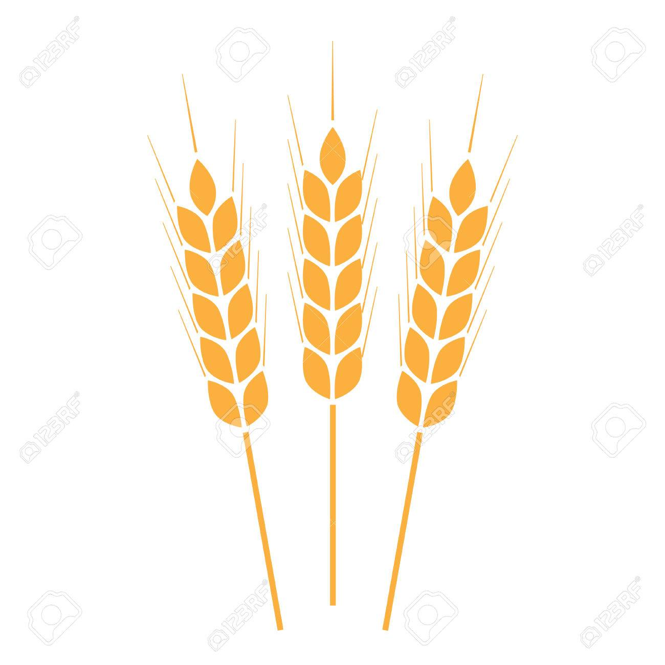 Wheat ears icon or sign crop symbol on white background design crop symbol on white background design element for bread biocorpaavc Gallery