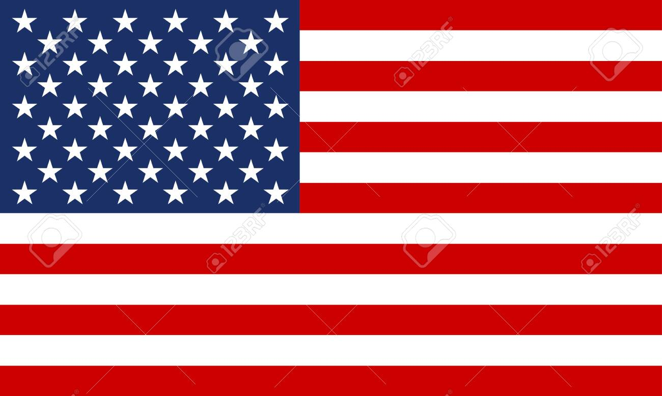 USA flag. United States of America national symbol. Vector illustration. - 121858013