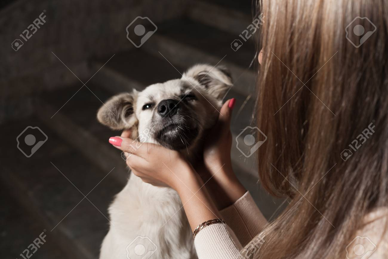 blonde outdoor with dog Stock Photo - 23728799