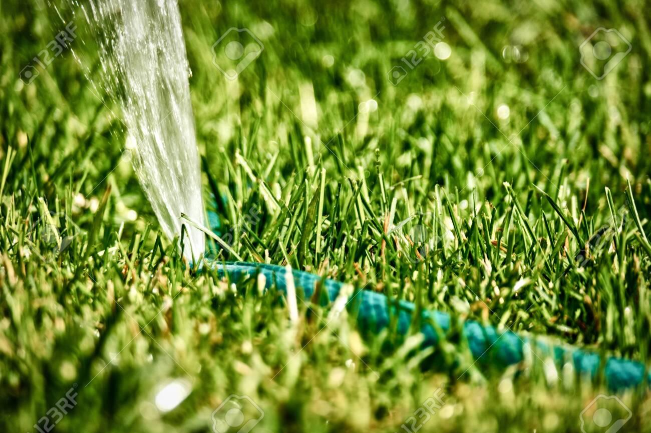 Diy Lawn Sprinkler Working In Grass Copyspace