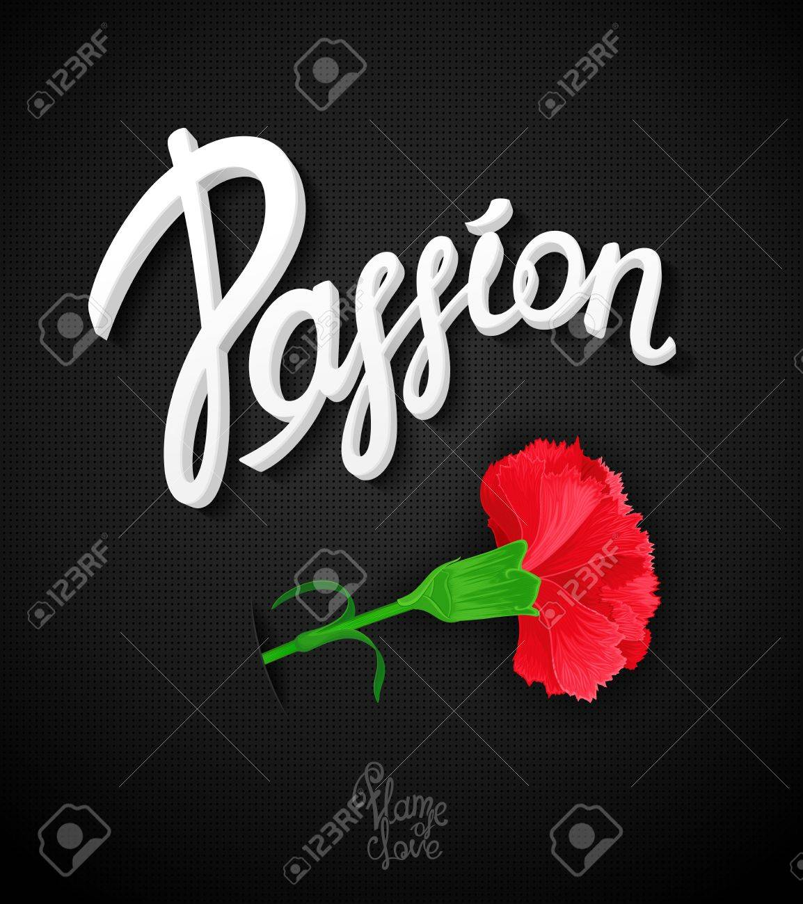 Carnation flower a symbol of love and passion bright carnation flower a symbol of love and passion bright passionate expression placard biocorpaavc Images