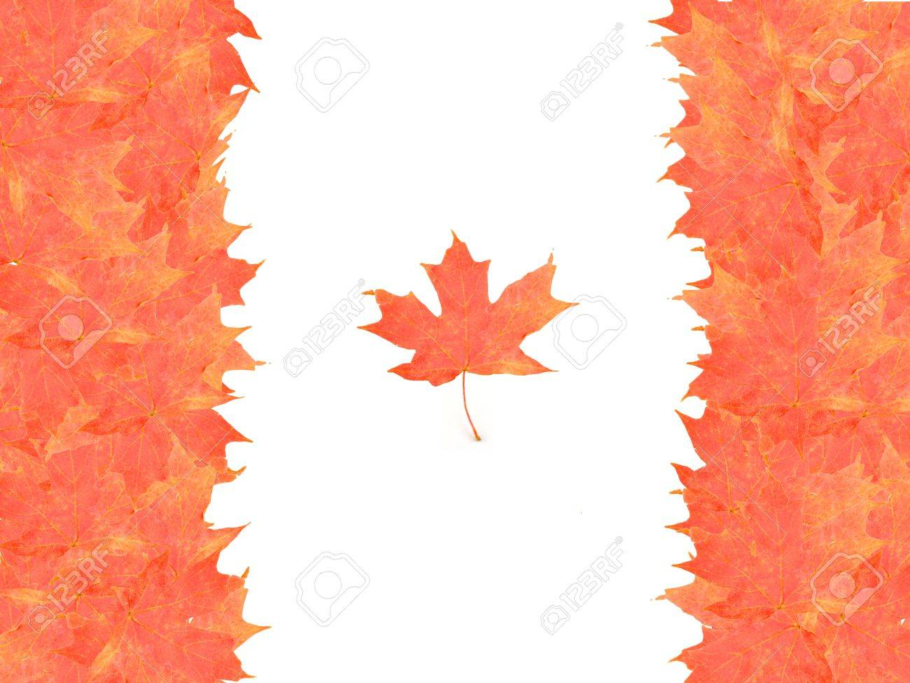 canadian flag made up from autumn maple leaves stock photo