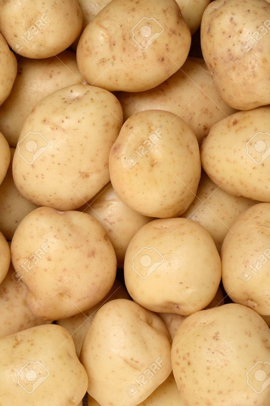 new potatoes background - 47529903