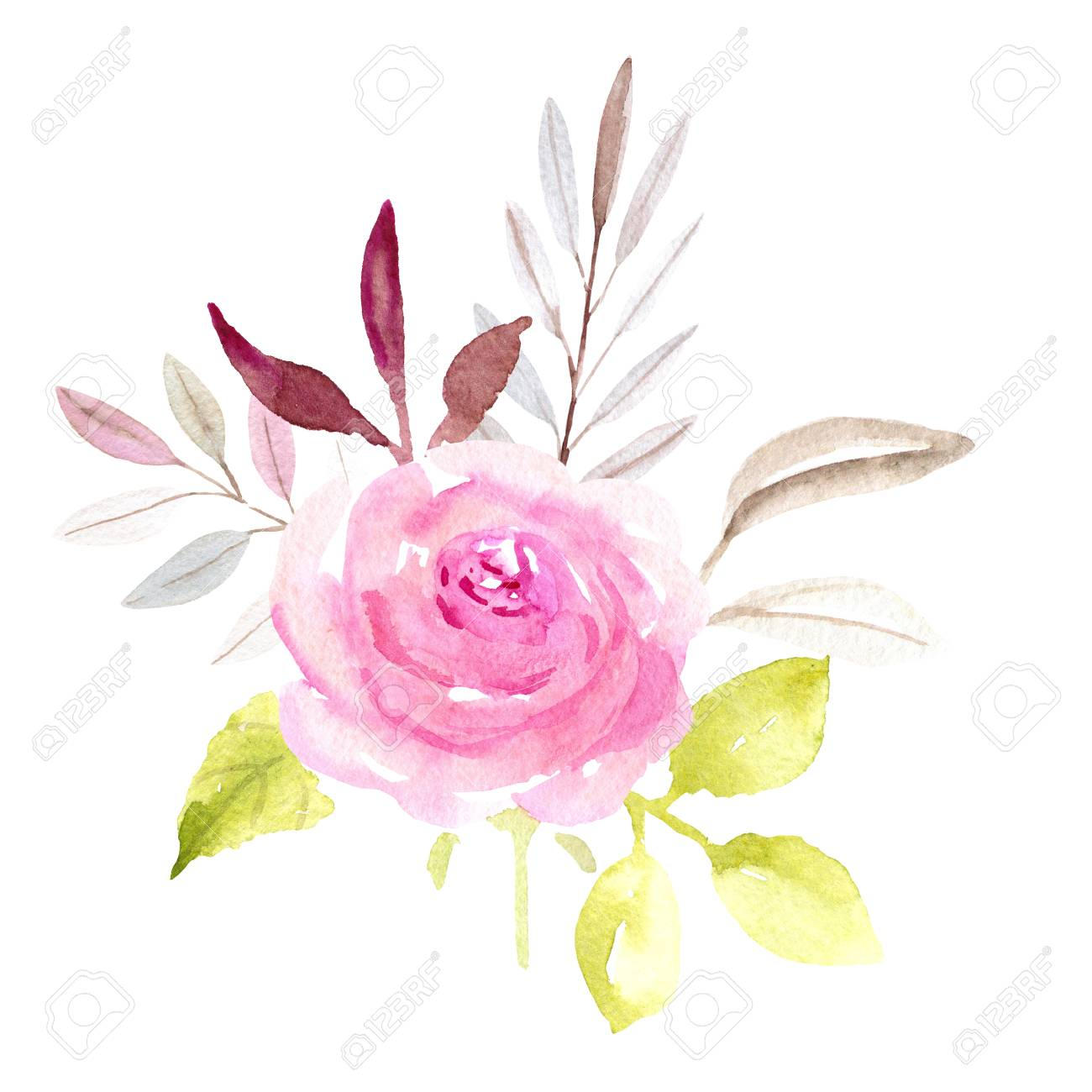 Pink Single Rose Flower Watercolor Illustration On White Background