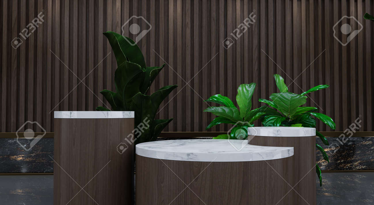 Abstract minimal scene with geometric forms. show cosmetic product, Podium, stage pedestal or platform. 3D wooden podium display with leaf shadow. 3d render - 171726930