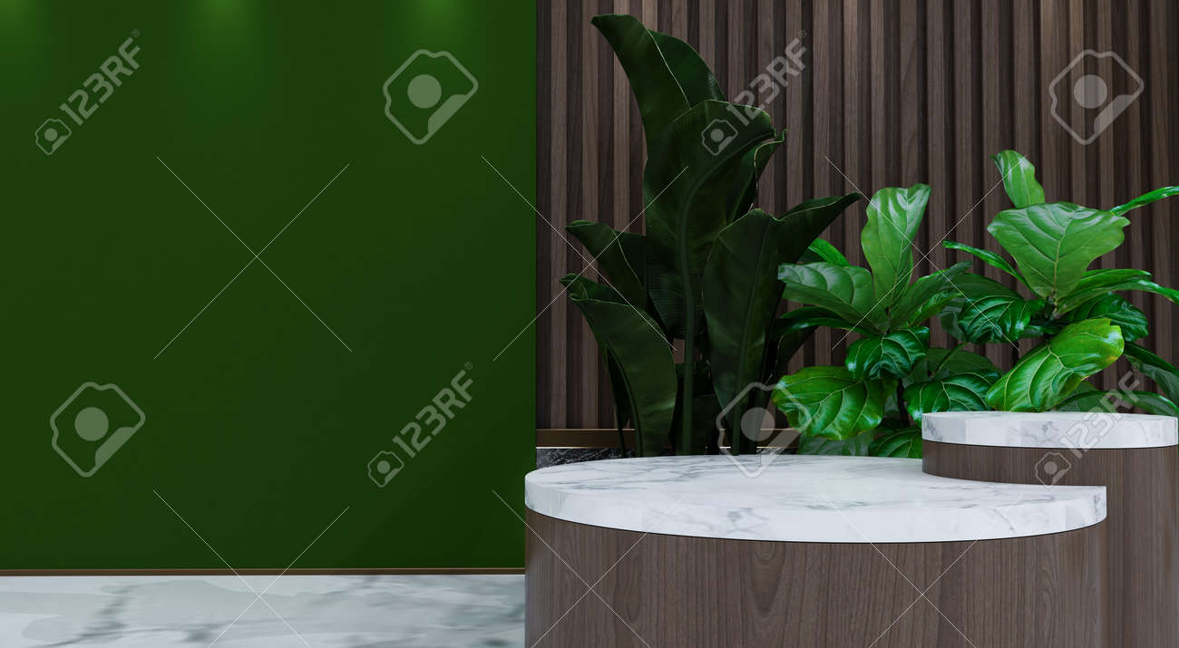 Abstract minimal scene with geometric forms. show cosmetic product, Podium, stage pedestal or platform. 3D wooden podium display with leaf shadow. 3d render - 171726932