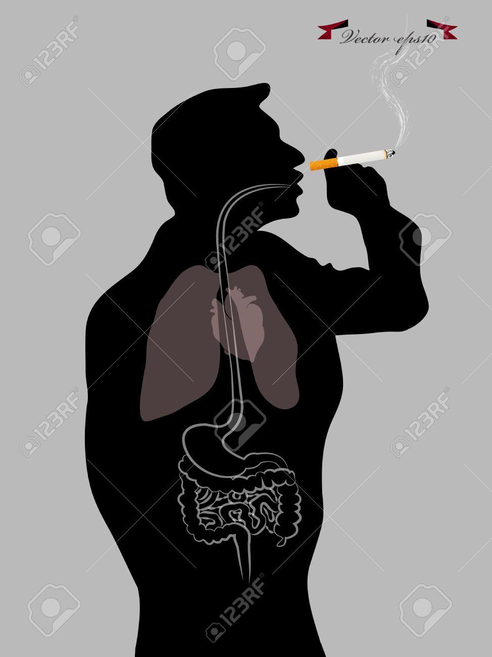 Innerhalb Des Menschlichen Körpers Rauchen Lizenzfrei Nutzbare ...