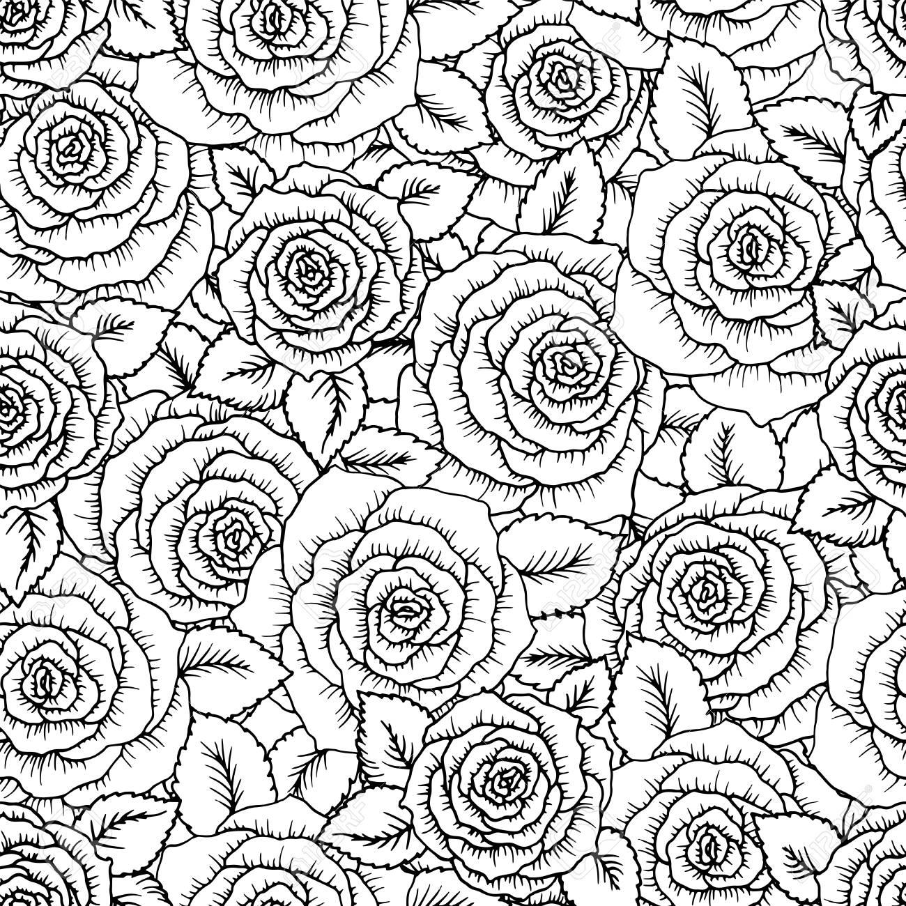 Hermosas Rosas De Patrones Sin Fisuras Blanco Y Negro Con Coutlines ...