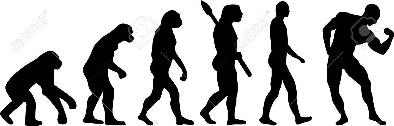 evolution muscle royalty free cliparts, vectors, and stock, Muscles