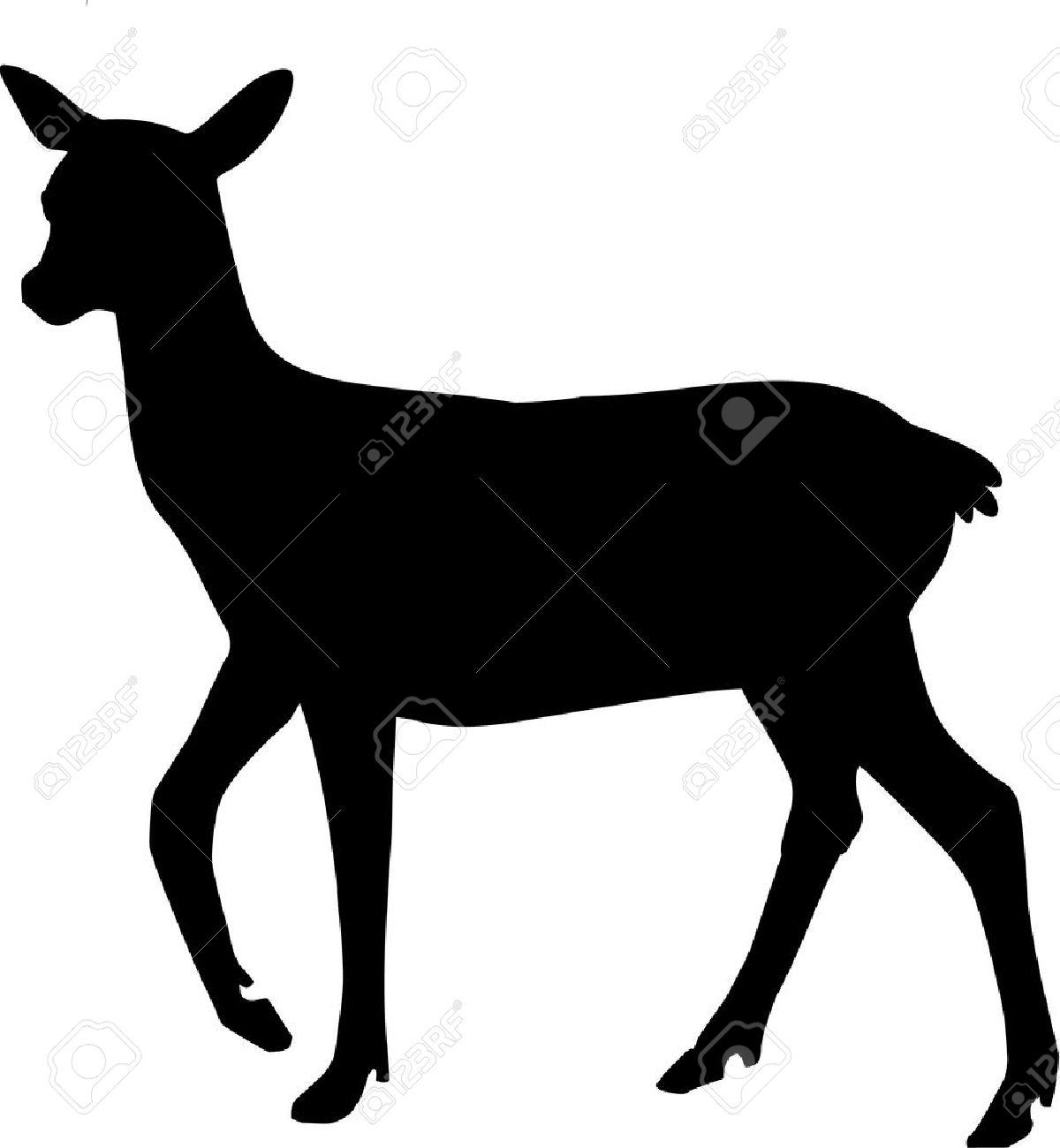 Silhouette of Roe Deer - 41493110