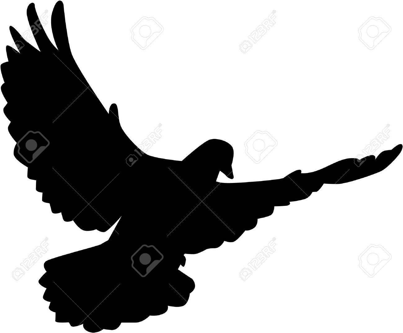 Flying Dove Silhouette Royalty Free Cliparts Vectors And Stock Illustration Image 43622535 Find high quality dove silhouette, all silhouette images can be downloaded for free for personal use only. flying dove silhouette