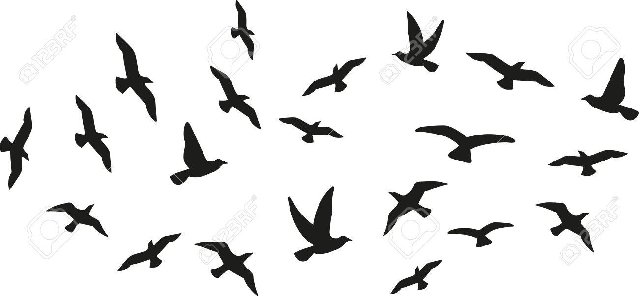 Flock of flying birds - 47271858
