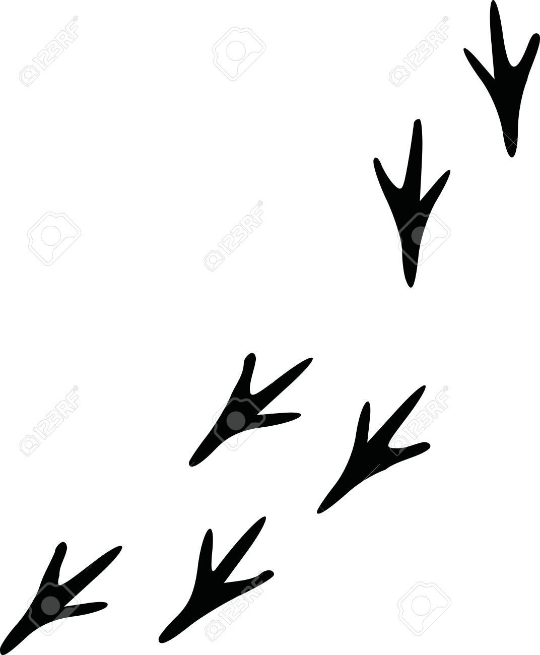 Bird Footprints Track Royalty Free Cliparts, Vectors, And Stock ...