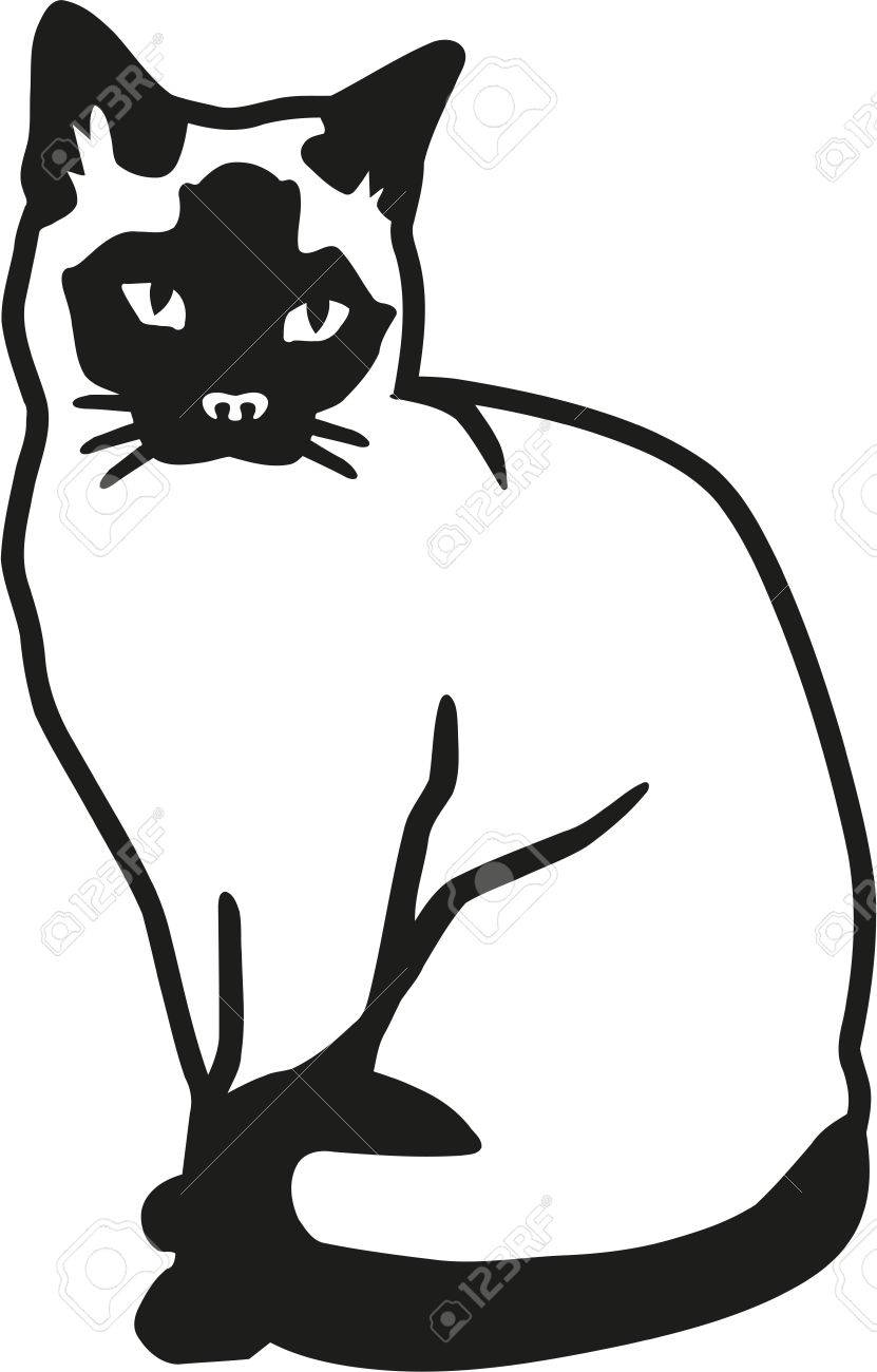 siamese cat royalty free cliparts vectors and stock illustration rh 123rf com vector cat paw vector cathodic protection