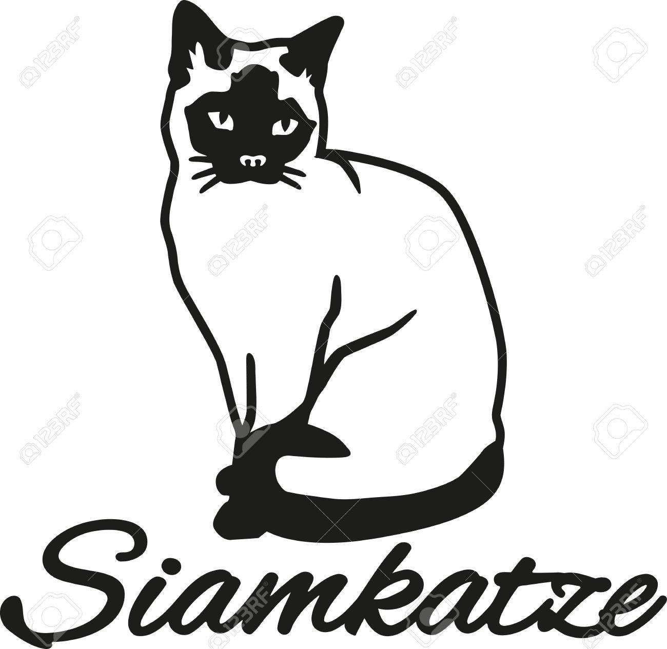 ドイツの名前とシャム猫のイラスト素材ベクタ Image 50323974