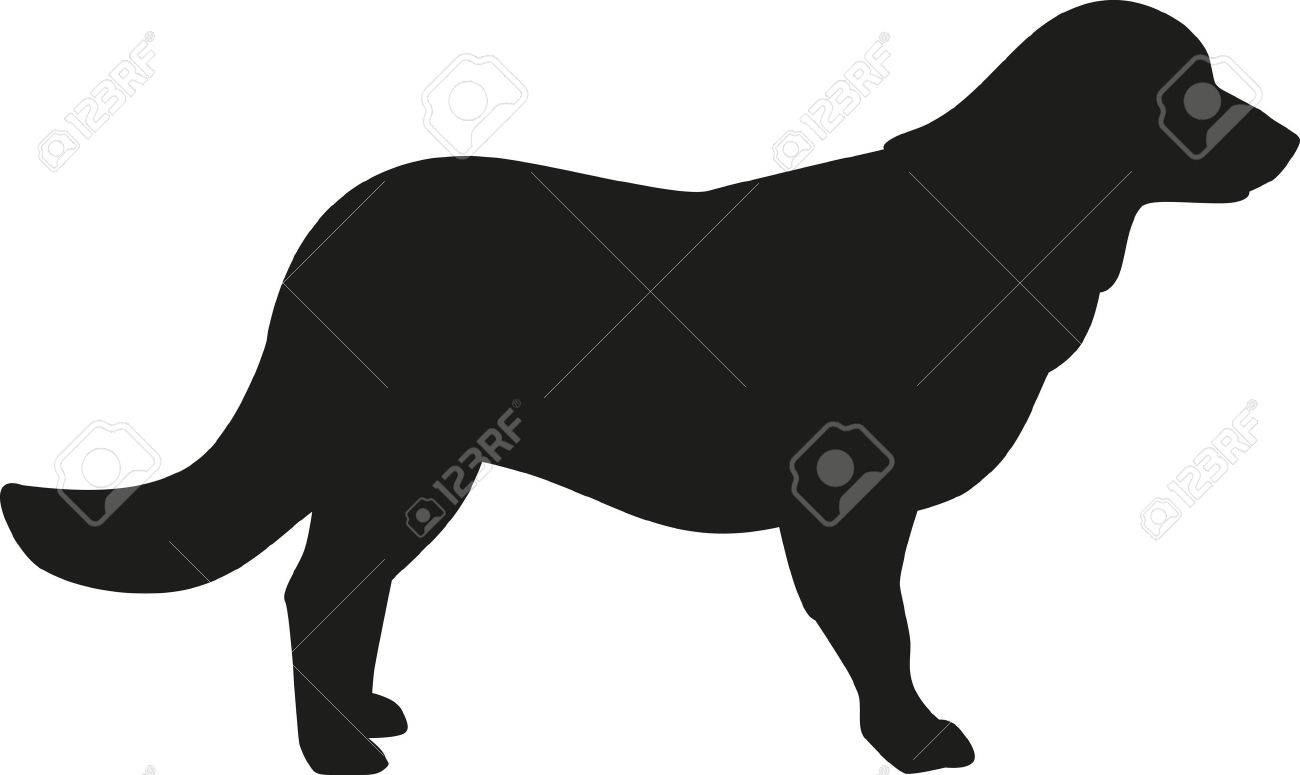 Golden Retriever Silhouette Royalty Free Cliparts Vectors And