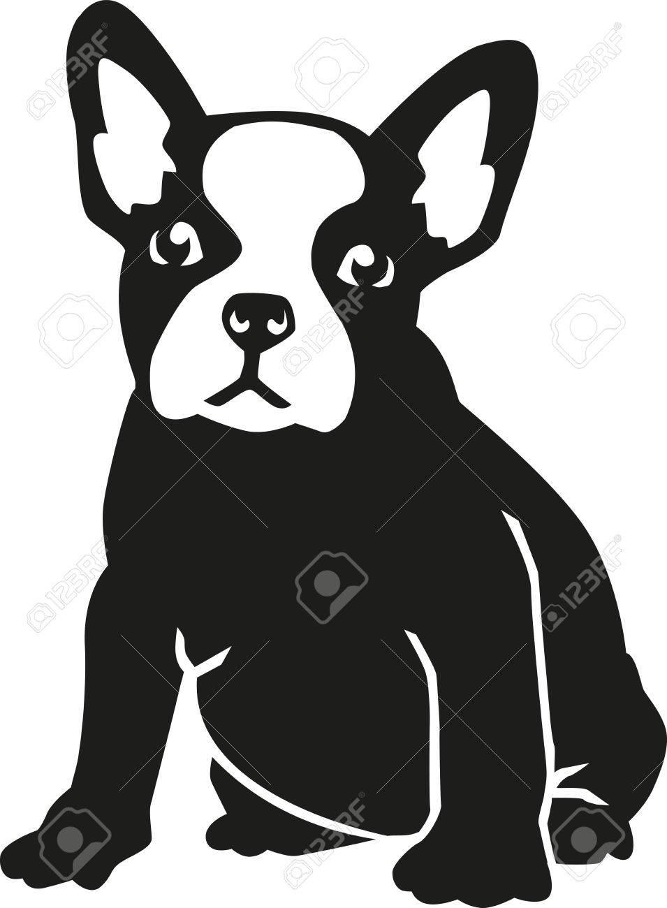 Sitting French bulldog - 51395418