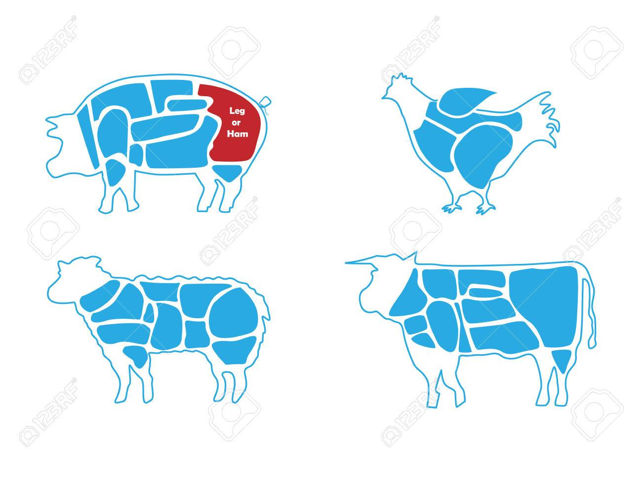 Beef Pork Lamb And Chicken Meat Butchers Chart Royalty Free Pig Butcher Diagram Stock Vector 80710716