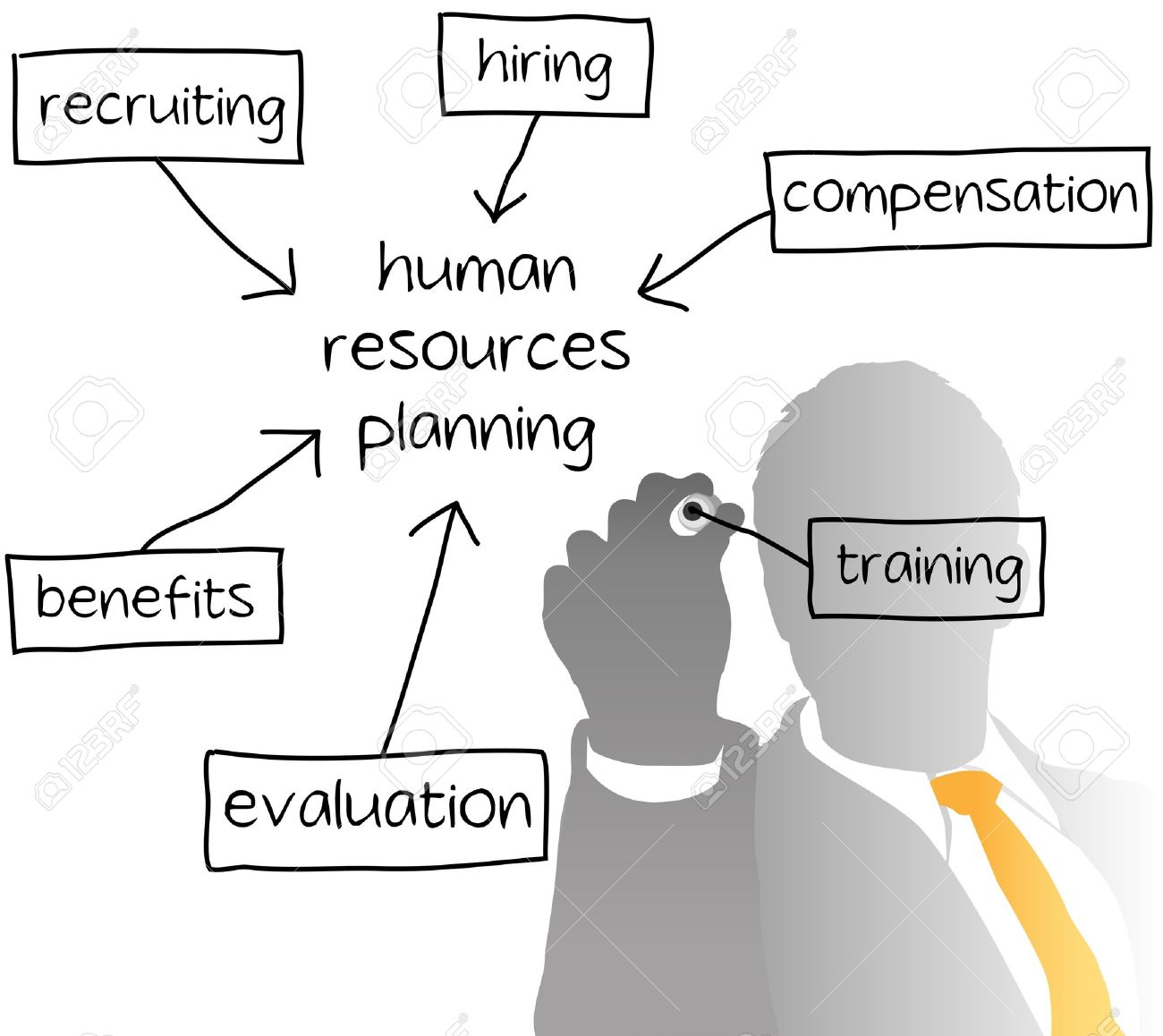 Enterprise HR Manager Drawing A Company Human Resources Business ...