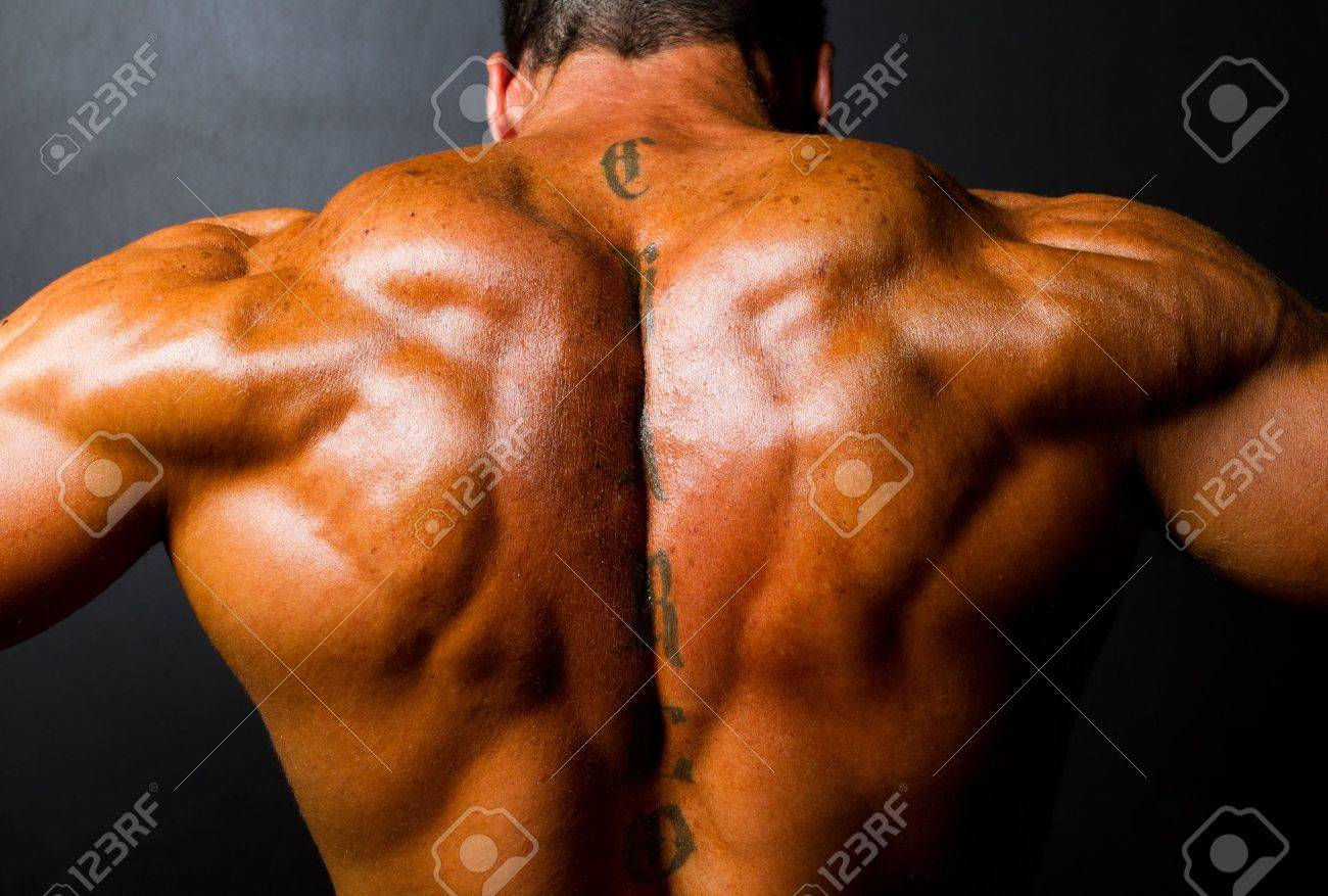 Muscular Bodybuilder\'s Back On Black Background Stock Photo, Picture ...
