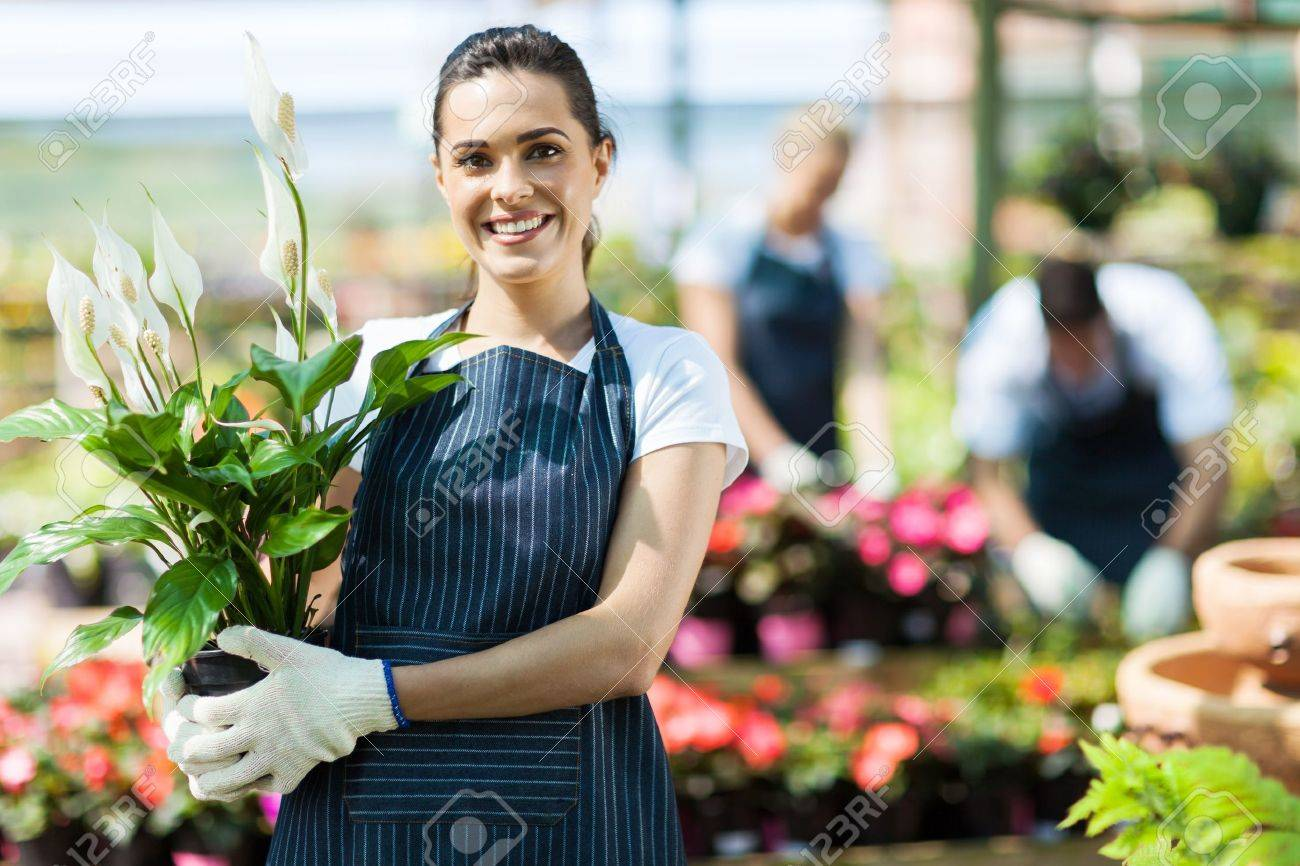 happy female nursery owner with pot of flowers inside greenhouse - 15773806
