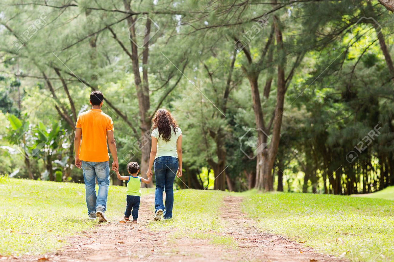 Rear view of young family holding hands walking in forest stock photo 27489504