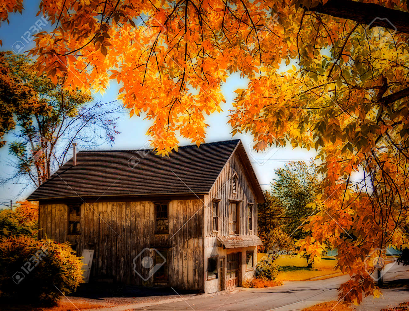 Photo of an old rustic barn framed by a tree with colorful orange