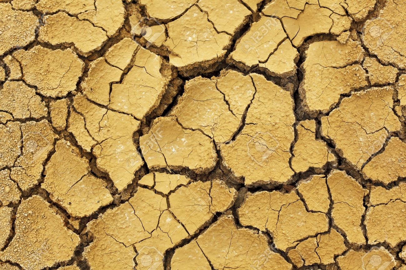 Dry soil in arid areas Stock Photo - 10061746